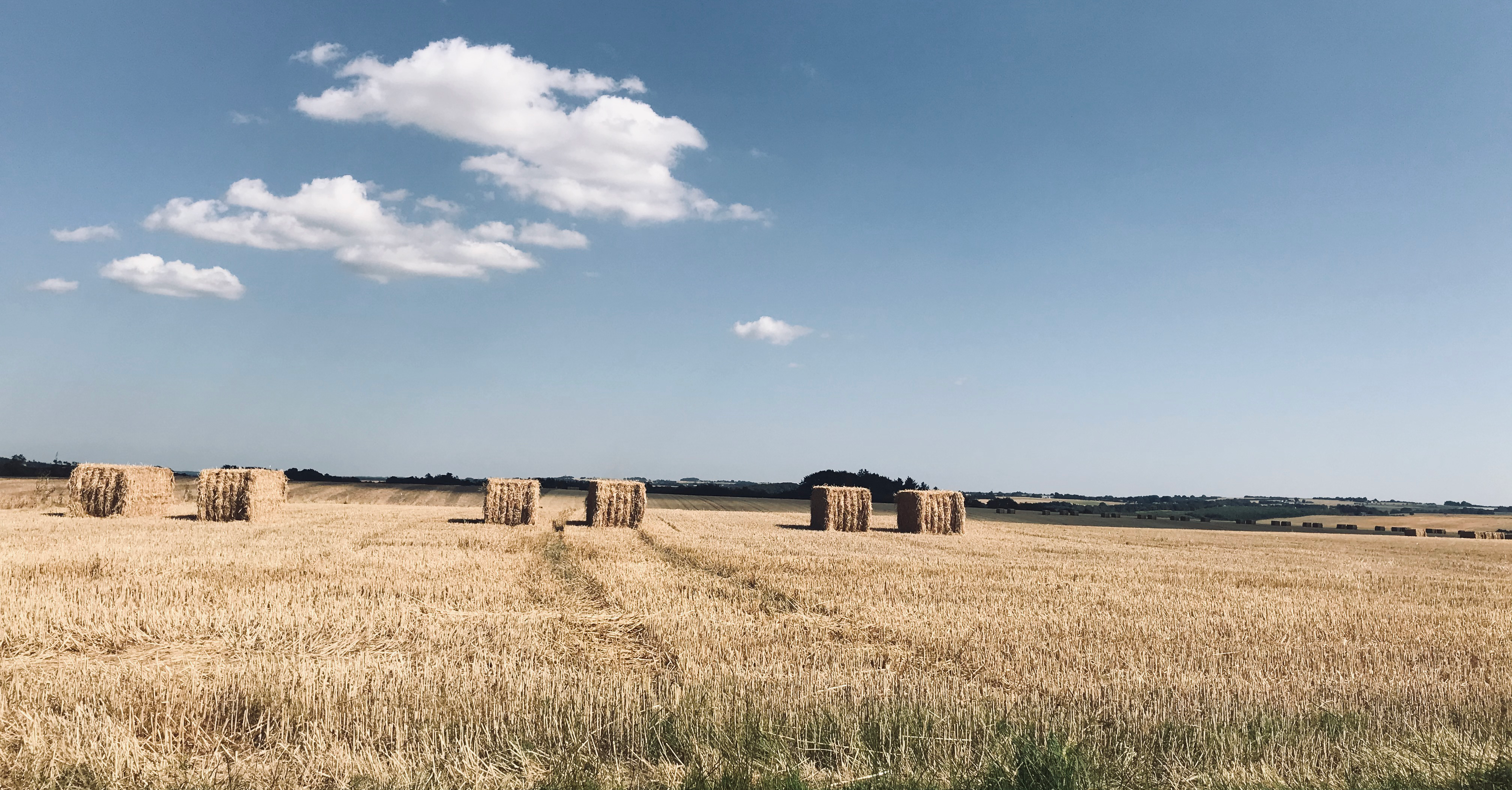 Straw is an important player for future biogas production